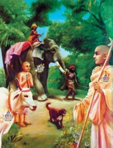 حکیمان متواضع به برکت دانش حقیقی ، به براهمانای شریف و دانا ، به گاو ، به فیل ، به سگ وبه سگ خور (مطرود) به یک چشم می نگرند.